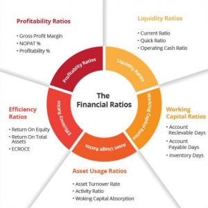 Classification of Financial Ratios