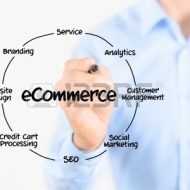 The E-Commerce Model