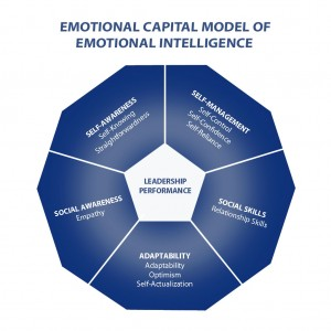 The capacity to be aware of, control, and express one's emotions, and to handle interpersonal relationships judiciously and empathetically.