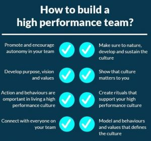 high performance team