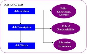 Manpower Planning which is also called as Human Resource Planning consists of putting right number of people, right kind of people at the right place, right time, doing the right things for which they are suited for the achievement of goals of the organization.