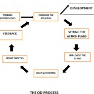Integrated Organizational Development