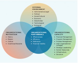 organizational assessment