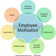 What Motivates Your Employee