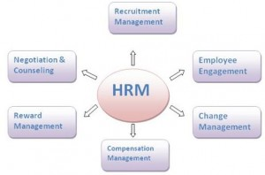 Role of managers in developing HRM