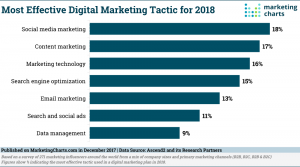 Which Digital Channels Deliver the Best ROI