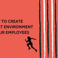 How to Create the Best Environment for Your Employees