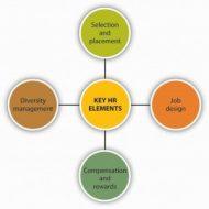 Critical Factors of HR