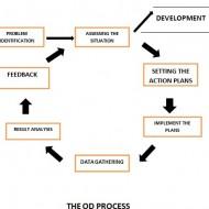 Integrated Organizational Development