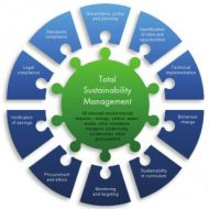 Environmental Sustainability Strategy
