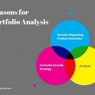 Portfolio Analysis and Implementation